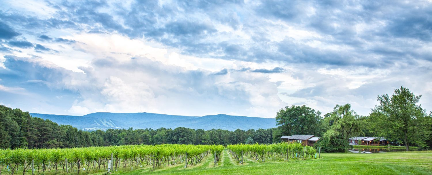 Wineries in Central PA