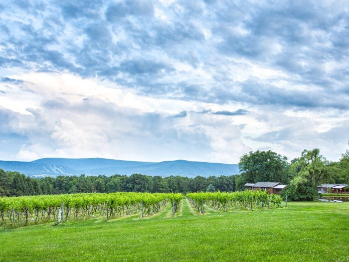 Bed And Breakfast And Winery In Pa